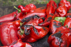 Red Bell Peppers grilied Royalty Free Stock Image