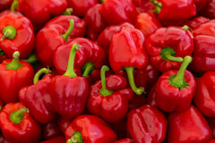 Red bell peppers for sale. A table is filled with red bell peppers for sale at a market in Istanbul Royalty Free Stock Photos