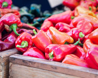 Red bell peppers. Wooden crates filled with sweet red peppers at a farmer's market Royalty Free Stock Photography