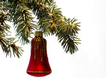 Red bell toy decorations on tree branches. on white background. royalty free stock photos