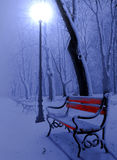 Red bench. Park alley in winter at night stock photos