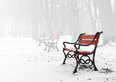 Red bench. In the fog in winter stock photo