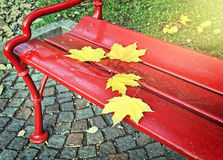 Red bench covered with leaves Royalty Free Stock Photo