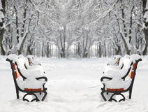 Red bench covered with snow Stock Images