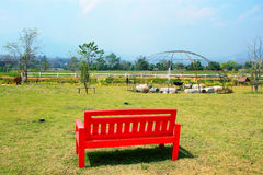 Red bench in the garden. Stock Photo