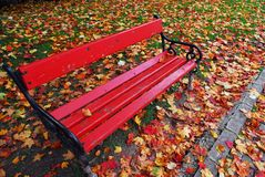 Red bench in the park. In autumn Royalty Free Stock Photos