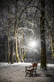 Red bench in the park. Covered with snow at night stock image
