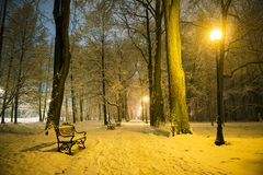 Red bench in the park. Covered with snow at night royalty free stock photos