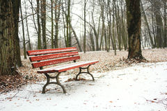 Red bench in the park covered with snow in winter Stock Photo
