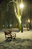 Red bench in the park. With falling snow at night stock photography