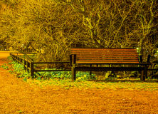 Red bench in the park Royalty Free Stock Photography