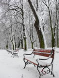 Red benches royalty free stock images