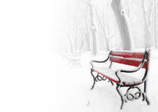 Red benches in the fog. In winter with space for text royalty free stock image