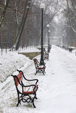 Red benches in the snow Royalty Free Stock Images