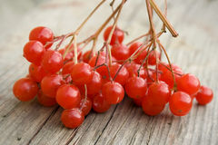 Red berries. On a wooden surface Stock Photo