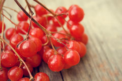 Red berries. On a wooden surface Royalty Free Stock Photo