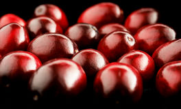 Red berries. Glossy dark red marsh cranberries on black background Royalty Free Stock Image