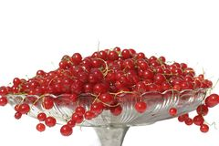 Red berries. Red currant stock images
