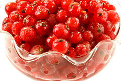 Red berries in bowl Stock Images