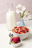 Red berries cereal Royalty Free Stock Photography