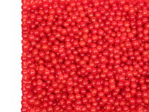 Red berries, cranberry Royalty Free Stock Images