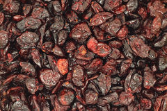 Red berries dried cranberries  background Stock Photography