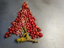Red berries on Xmas tree with lichen. Red berries forming a Xmas tree with lichen on gray background royalty free stock images