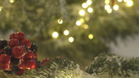Red berries on frosted christmas tree background stock video footage