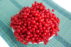 Red berries of guelder rose in white plate on blue. Underlay Royalty Free Stock Image