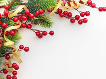 Red Berries and Pine Frame Stock Image