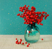 Red berries of Sacred Bamboo (Nandina Domestica). (Place for text) Stock Image