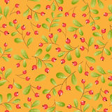 Red berries seamless pattern. Orange backdrop Stock Images