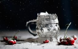 Red berries in the snow. Beautiful red berries in the snow Stock Image