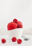 Red berries sorbet Stock Photo