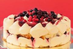 Red Berries Tiramisu Cake Stock Image