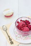 Red berries sorbet Royalty Free Stock Images