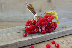 Red berries of viburnum. On wooden background Royalty Free Stock Photos