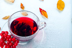 Red berries  viburnum and cup of tea Royalty Free Stock Image