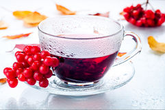 Red berries  viburnum and cup of tea Royalty Free Stock Photos