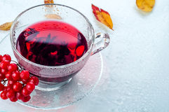 Red berries  viburnum and cup of tea Royalty Free Stock Images