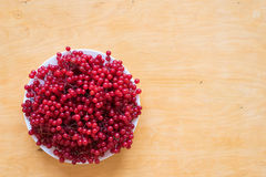 Red berries of viburnum on a plate Royalty Free Stock Photo