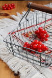 Red berries of viburnum in wire basket Stock Image