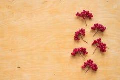 Red berries of viburnum on wood Royalty Free Stock Photos