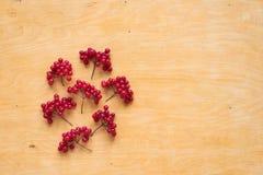 Red berries of viburnum on wood Royalty Free Stock Image
