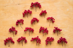 Red berries of viburnum on wooden background Royalty Free Stock Photography