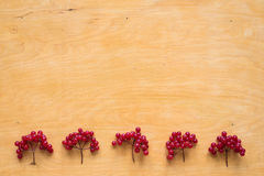 Red berries of viburnum on wooden background Stock Images