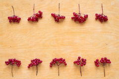 Red berries of viburnum on wooden background Royalty Free Stock Photo