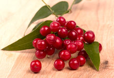 Red berries  on wood Stock Photography