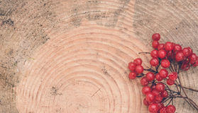 Red berries on wooden background cutoff. Beautiful bright autumn fruits Deringer on the background of the cut of an old tree. Wooden texture stock image