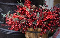Red Berry Country Basket Stock Image
